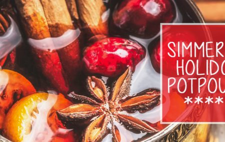 This holiday season, impress your friends and family with a wonderfully scented home.  Simmering and/or stove top potpourri is a great way to make your home smell warm and inviting during the Christmas season, and we've put together a great collection of our favorite scents and recipes that are sure to make your home smell […]
